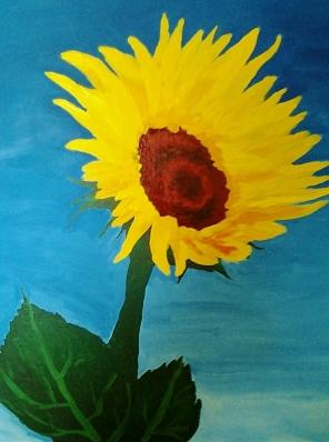 Ange's sunflower